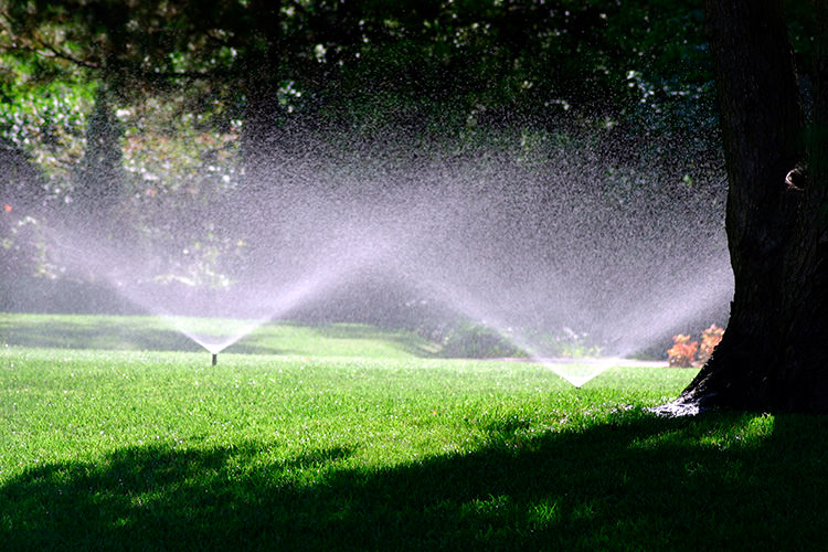 Irrigation system on landscaped yard.